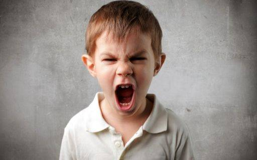 دانلود مبانی نظری و پیشینه تحقیق درباره ابراز و مهار خشم