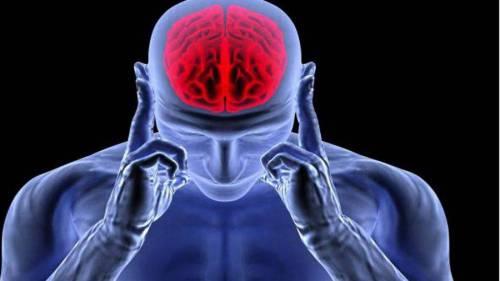 مبانی نظری و پیشینه تحقیق درباره سیستم های مغزی رفتاری